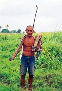 Shirtless man working in fields