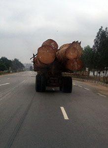 Pointe Noire Logging Truck